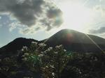 島の日暮れ.jpg