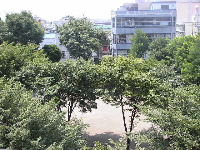 夏の公園3